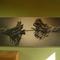 Producten-Panelen-210x210